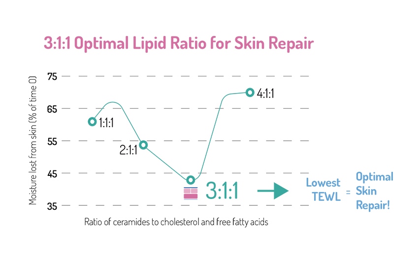 optimal-lipid-ratio